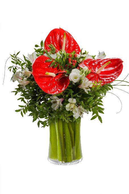 Výsledek obrázku pro květiny